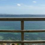 Proyectos de verano: Lo que necesitas para acertar