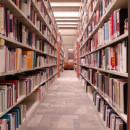3 falsos mitos sobre organización que deberías eliminar cuanto antes