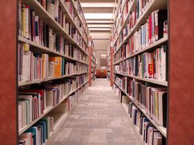 Biblioteca ordenada